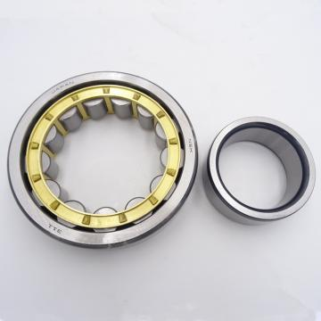 55 mm x 100 mm x 25 mm  NSK NJ 2211 W Cylindrical Roller Bearings